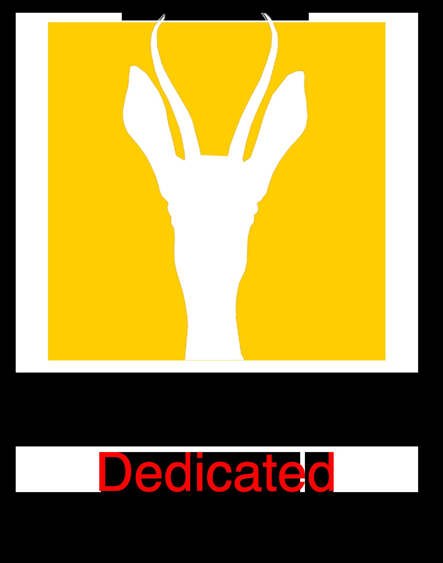 SPI Dedicated Host - Springbok